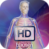 Blausen Medical Communications, Inc. - Blausen Engels Menselijke Atlas HD kunstwerk